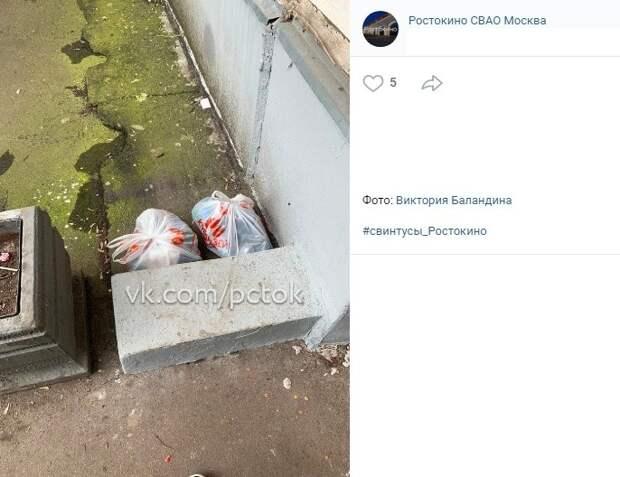 За нечистоплотными жильцами на проспекте Мира убрали коммунальщики