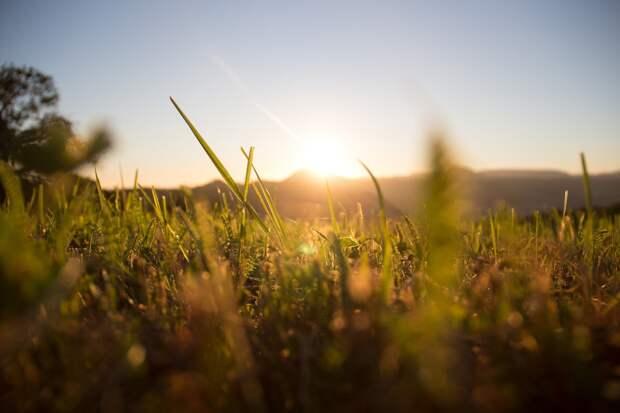 Комфортные +25 градусов обещают 9 июня в Удмуртии