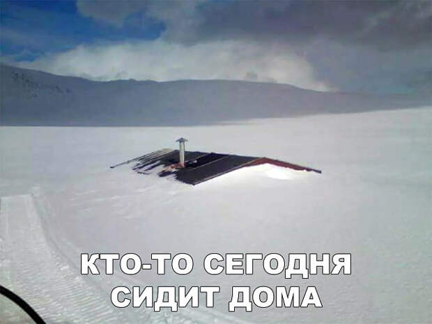 3416556_image_1 (640x480, 53Kb)