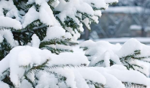 Зима вмае: мощный снегопад обрушился насевер Карелии