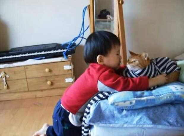 youtube.com/maonooya