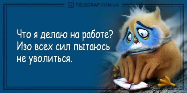 1051_5359520750434779344 (700x350, 228Kb)