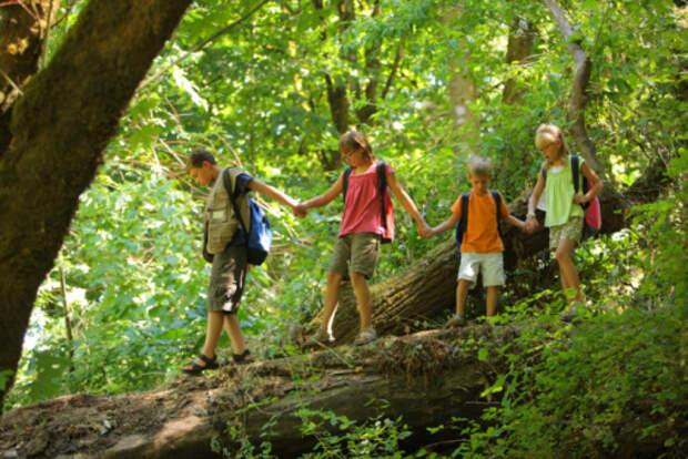 Специалисты семейного центра «Диалог» рассказали о том, как организовать летние каникулы для ребенка