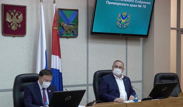 Парламент Приморья поддержал поправки вфедеральный закон опенсионном страховании