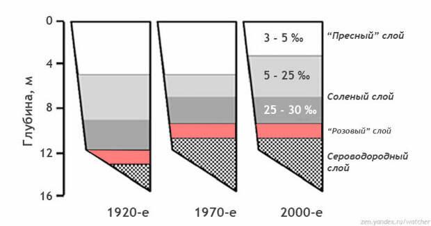 """В разное время проводились исследования озера Могильное. На схематичном рисунке представлен разрез водоема с данными по глубине и солености в разные периоды. Заметна тенденция к засолению озера. Рисунок автора на основе измерений из доклада """"Морское озеро Могильное: сто лет одиночества"""" (2014)"""