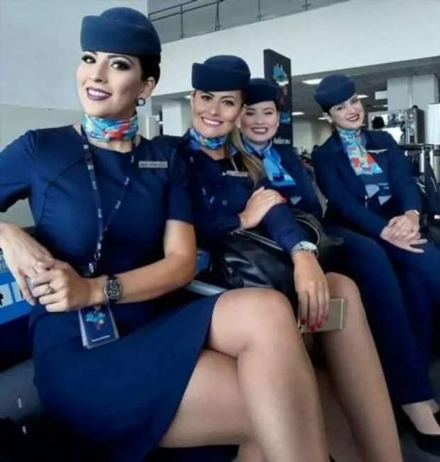 Ножки стюардесс. Подборка chert-poberi-styuardessy-chert-poberi-styuardessy-02020717092021-10 картинка chert-poberi-styuardessy-02020717092021-10