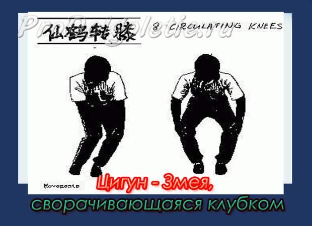 http://www.prodolgoletie.ru/wp-content/uploads/2011/10/zmey.gif