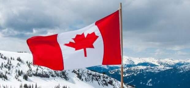 NYT: Канадцы извинились перед российскими спортсменами за инцидент на Олимпиаде