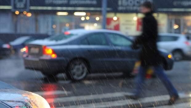 Тепло, дождь и мокрый снег ожидаются в Московском регионе на выходных