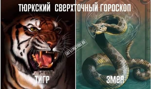 ТЮРКСКИЙ ГОРОСКОП