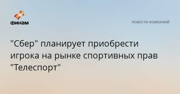 """""""Сбер"""" планирует приобрести игрока на рынке спортивных прав """"Телеспорт"""""""