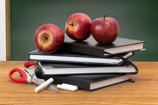Хорошо ли кормят в Некрасовских школах — новый опрос