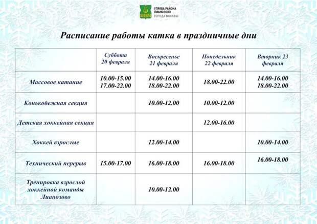 Опубликован график работы ледовой площадки в Вологодском проезде в праздники