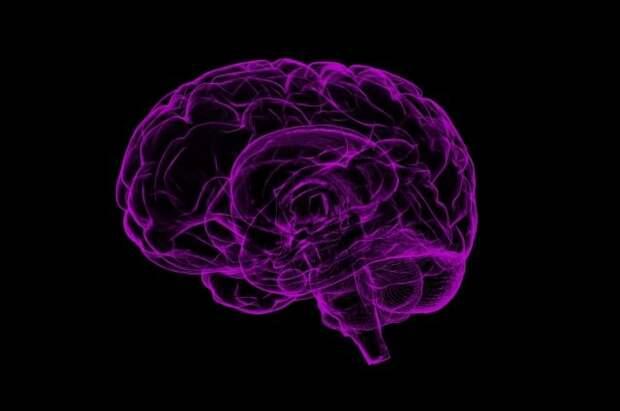 Учёные разработали интерфейс для набора текста силой мысли