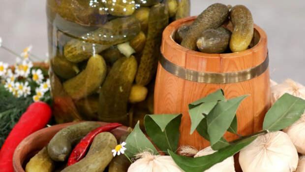 Врач объяснил пользу солений и чайного гриба для кишечника