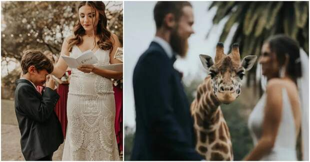 27 ярких свадебных фотографий из непростого 2020 года