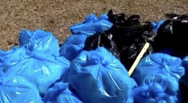 Субботник прошел впервые за 20 лет в Кудряшовском заповеднике – новосибирцы собрали мусор с площади почти 7 га