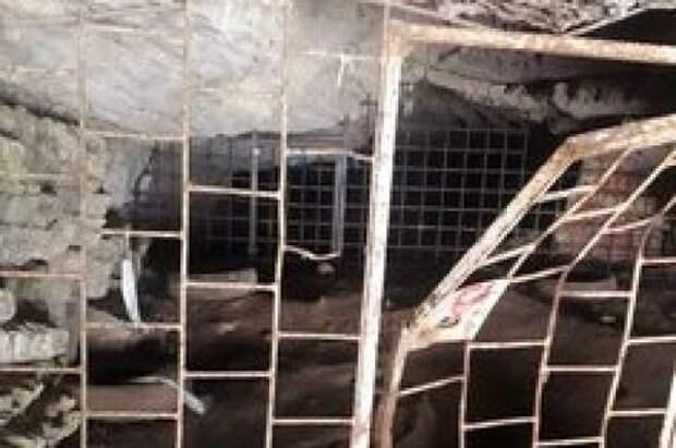 Челябинские биологи требуют срочно усилить охрану Игнатьевской пещеры
