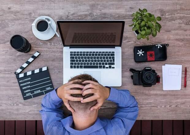 Колокольцева попросили проверить блогеров, нарушающихУК ради контента