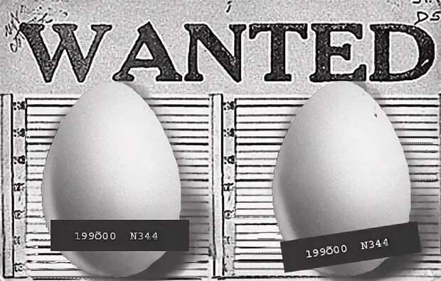 Те же яйца, только в профиль