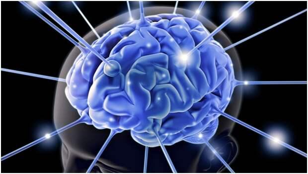 5 Способов, как заставить мозг работать