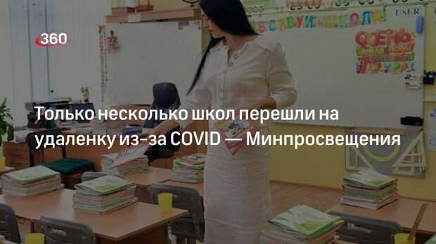 Только несколько школ перешли на удаленку из-за COVID— Минпросвещения