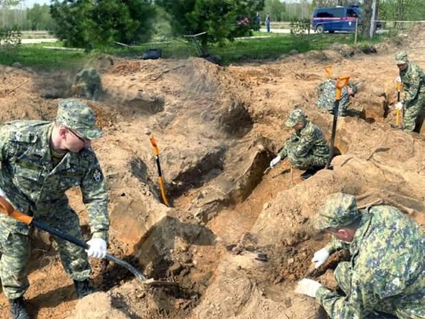 Массовое захоронение мирных граждан времен войны нашли в Новгородской области