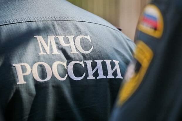 Спасатели Севастополя попросили не ходить под деревьями, столбам и щитами!