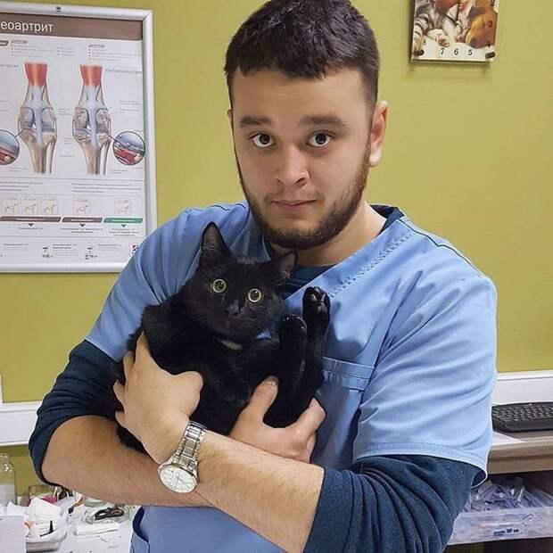 Российскому ветеринару грозит тюрьма за то, что он спасал животных от смерти