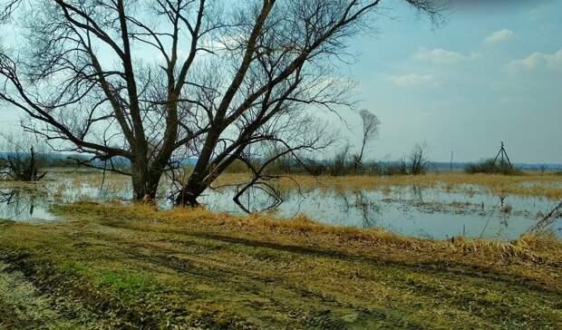 В Уфе в ближайшие два дня наступит пик половодья на реке Белой