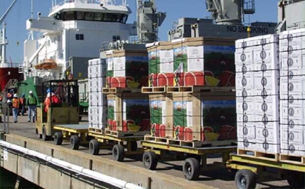 Белоруссия перевыполнила план по поставке яблок в Россию в 2015 году в пять раз