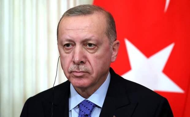 Боевики ИГИЛ и «Аль-Каиды» стали инструментом Эрдогана для расширения интересов Турци