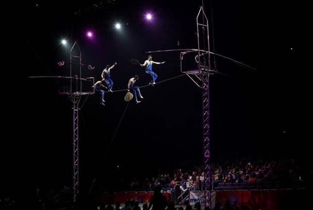 Посещаемость представлений резко упала, как только цирк был вынужден отказаться от выступления слонов закрытие, сша, цирк