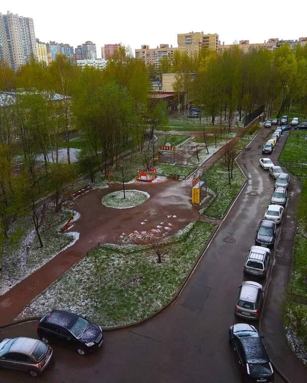 Кажется, мы стали забывать, что майский снег в Петербурге — далеко не редкость. Он выпадает минимум третий год подряд ️