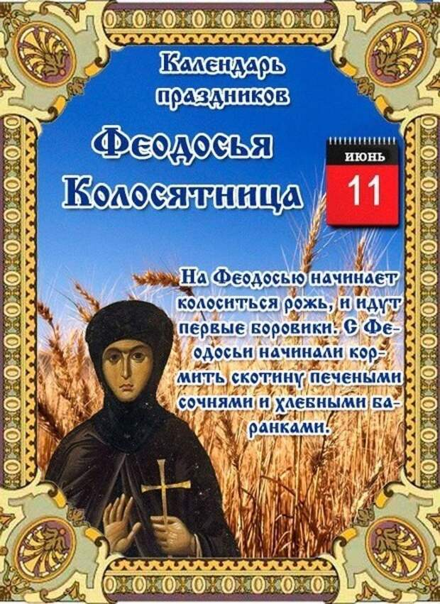 11 июня  - Народно-христианский праздник Феодосия Колосяница.