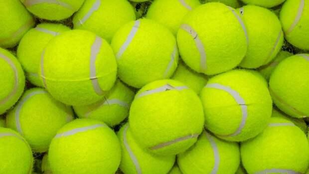 Отец теннисистки Малых рассказал об избиении дочери тренером