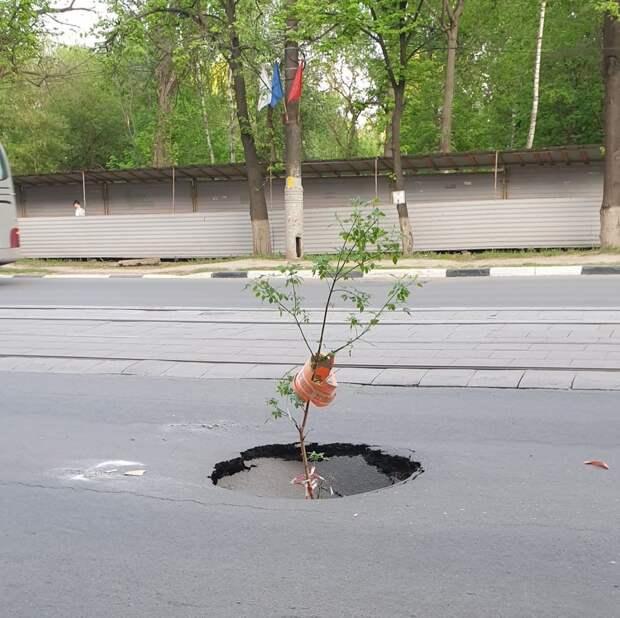 Обвал дороги образовался на улице Белинского в Нижнем Новгороде
