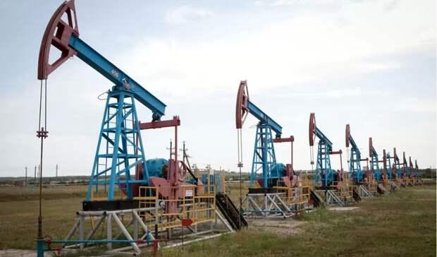 На330% восполнила «Башнефть» запасы нефти