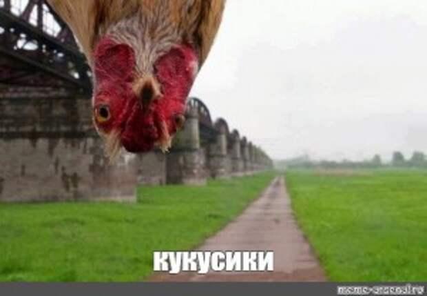 Чехия - курица с отрубленной головой.