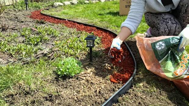 Обязательна ли мульча в саду и огороде?
