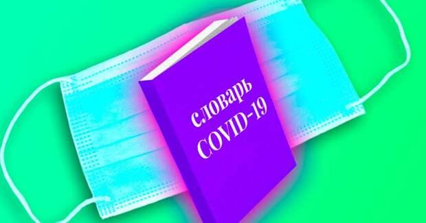 Тест: Слабо угадать значение 6 слов, которые появились из-за Covid-19?