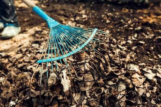 Особенности приготовления компоста из листьев