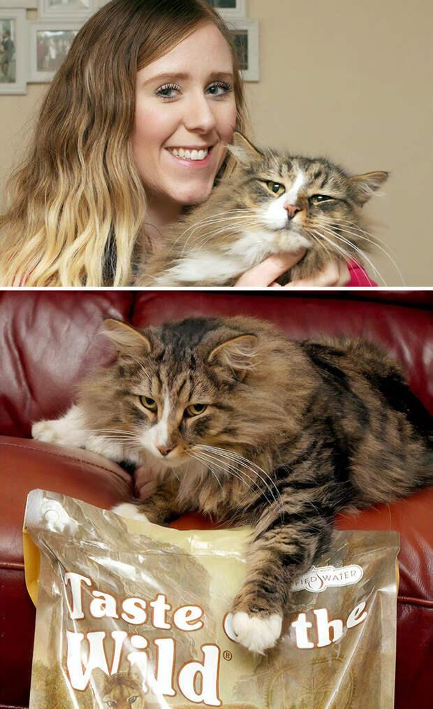 Теперь, возможно, ей не помешает посидеть на диете