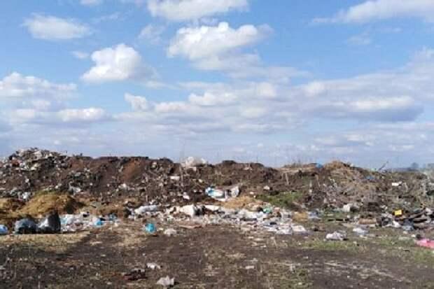 В Ржаксинском районе появилась несанкционированная свалка
