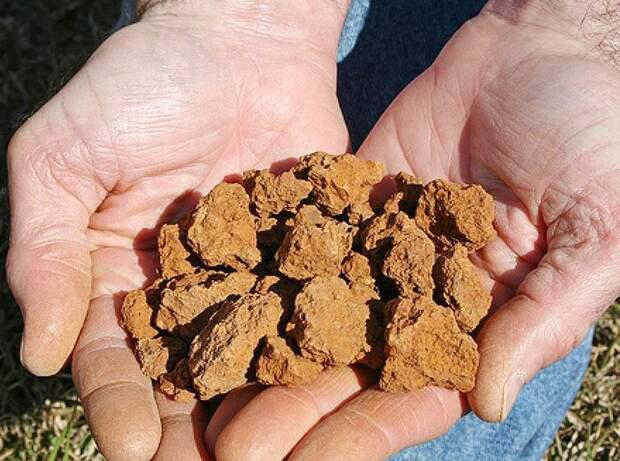 Делаем дренаж вокруг дома своими руками на глинистых почвах