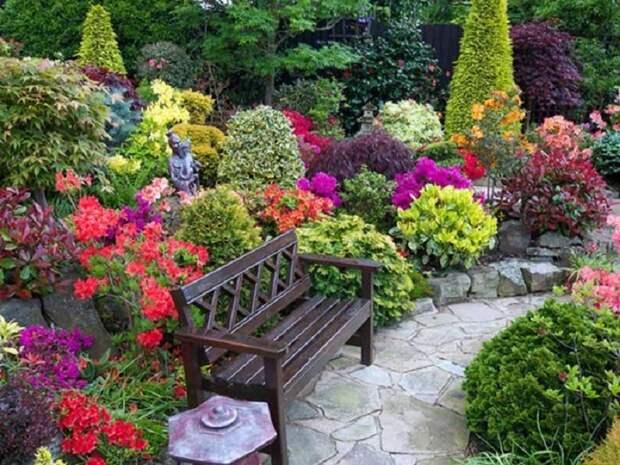 идеи для дачи цветники