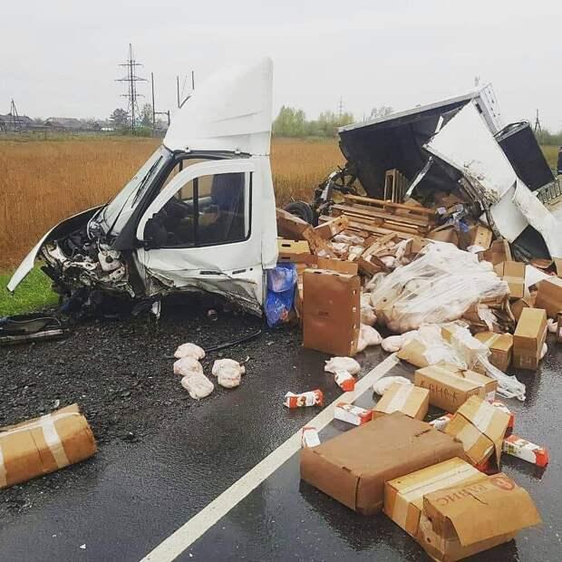 Пять человек погибли в ДТП в Красноярском крае. Фото
