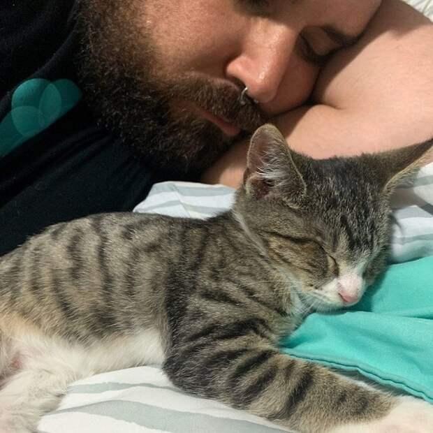 Как ниточка с иголочкой: незрячий котенок всюду следует за братишкой