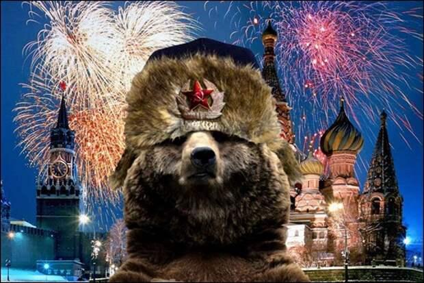 Почему медведь символ России?