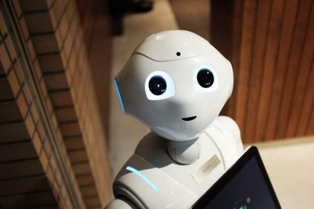 Илон Маск создаст домашнего робота для «скучных и повторяющихся» дел (видео)